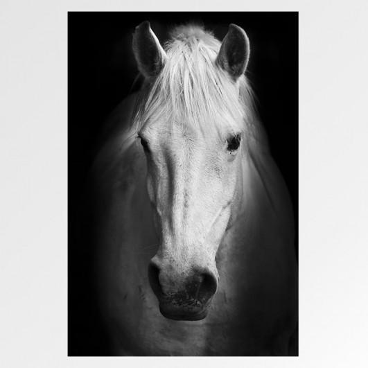 """Cuadro sin marco """"Horse"""" en lienzo o..."""