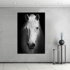 "Cuadro sin marco ""Horse"" en..."